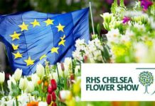 EU grown plants banned from Chelsea Flower Show