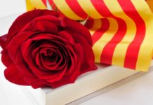 Spain: Over 7 million roses expected to be sold this Sant Jordi