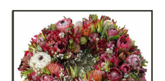 Protea News: April's Articles and Blogs of Interest from Around the World