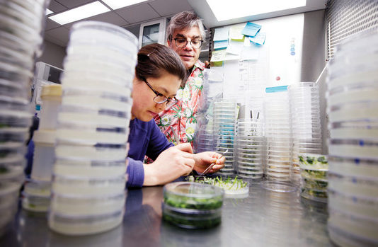 Nebraska's Center for Plant Science Innovation is Transforming Agriculture