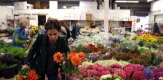 SF Flower Mart—a Martha Stewart favorite—will move to Potrero Hill