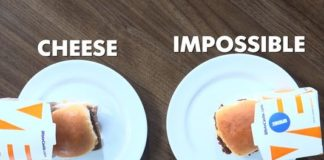 White Castle launches plant-based Impossible Slider nationwide