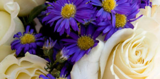 Ten Flowers that Smell Delicious