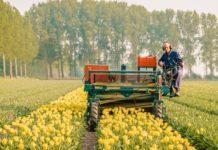 SAF Weighs In On The Proper Regulation of Pesticides