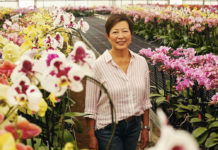 Matsui Nursery innovated the floral industry, and now has a mission of giving back.