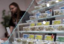 Canadian cannabis distributor Fire and Flower in growth mode