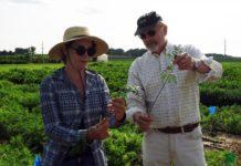Plant breeders balance shared innovation, revenue